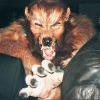 Werwolf am 16.05: JETZT NEU